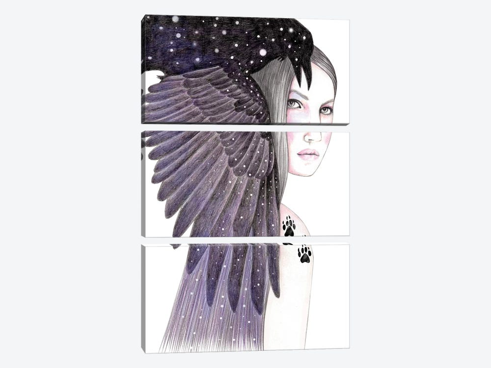 Black Bird by Andrea Hrnjak 3-piece Canvas Artwork