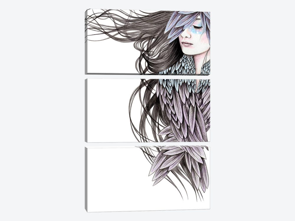 Raven Wings by Andrea Hrnjak 3-piece Canvas Wall Art