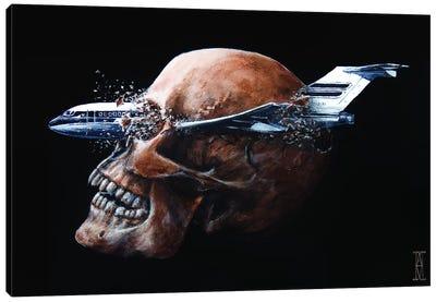 Terminal Velocity Canvas Art Print