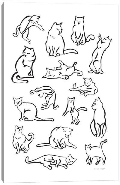 Cattern Canvas Art Print