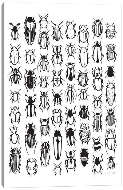 Beetle Canvas Art Print