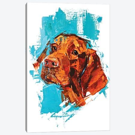 Vizsla Canvas Print #AHZ10} by Anna Cher Canvas Print