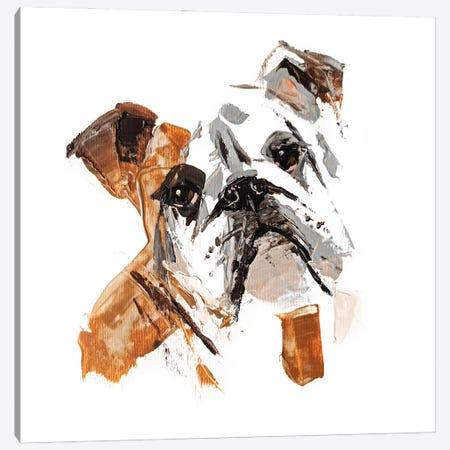 English Bulldog II Canvas Print #AHZ12} by Anna Cher Canvas Art Print