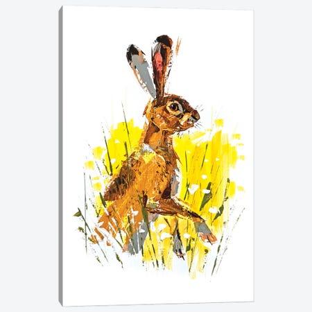 Hare Canvas Print #AHZ13} by Anna Cher Art Print