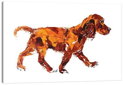 Spaniel Canvas Art Print