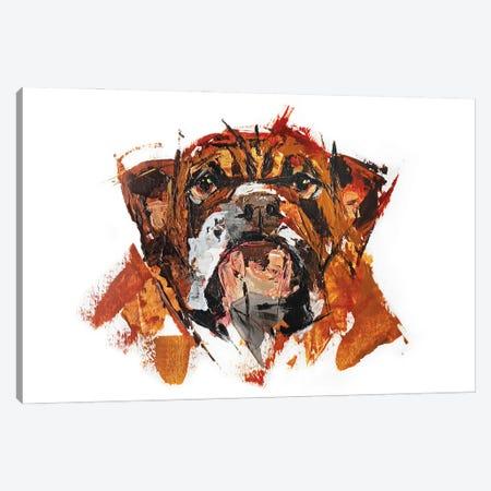 Bulldog Canvas Print #AHZ26} by Anna Cher Canvas Art Print
