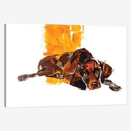 Pointer II Canvas Print #AHZ7} by Anna Cher Canvas Artwork