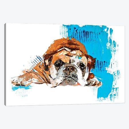 English Bulldog Canvas Print #AHZ8} by Anna Cher Art Print