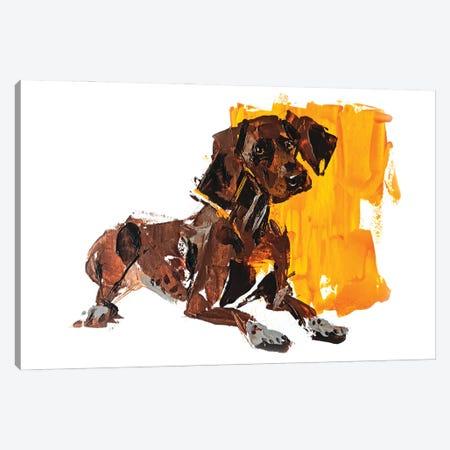 Pointer I Canvas Print #AHZ9} by Anna Cher Canvas Art Print