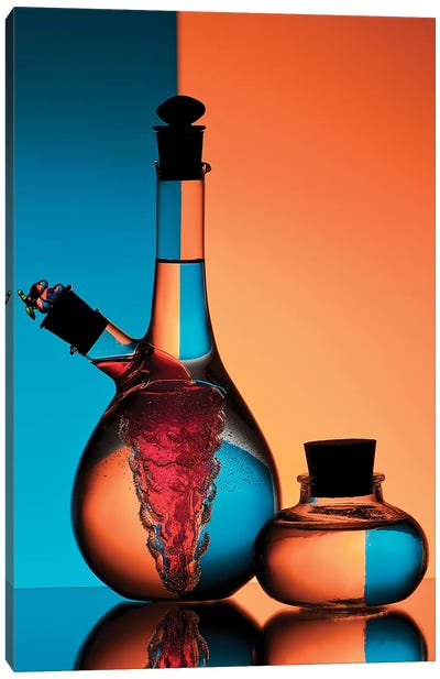Oil And Vinegar Canvas Art Print