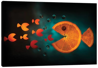 Orange Fish Canvas Art Print