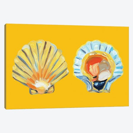 Scallops on Yellow Canvas Print #AIE34} by Alice Straker Canvas Wall Art