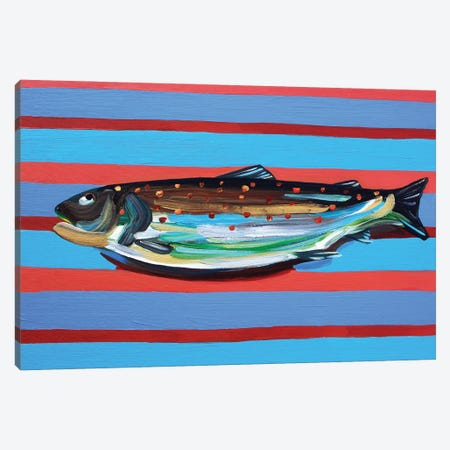 Brown Trout on Blue and Maroon Stripey Canvas Print #AIE6} by Alice Straker Art Print