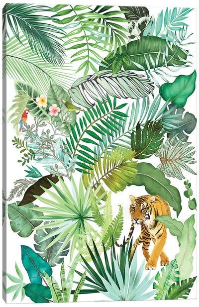 Jungle Tiger IV Canvas Art Print
