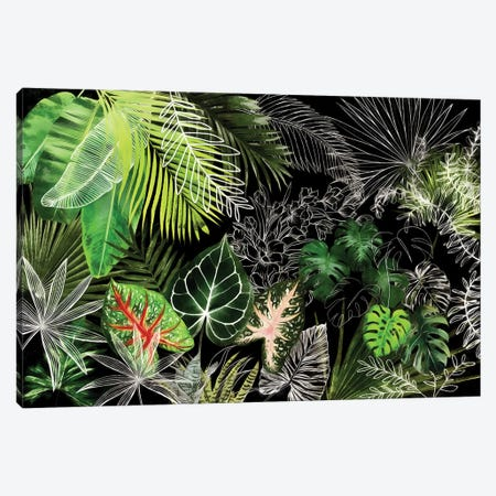 Tropical Foliage IV Canvas Print #AII130} by amini54 Art Print