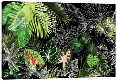 Tropical Foliage IV Canvas Art Print