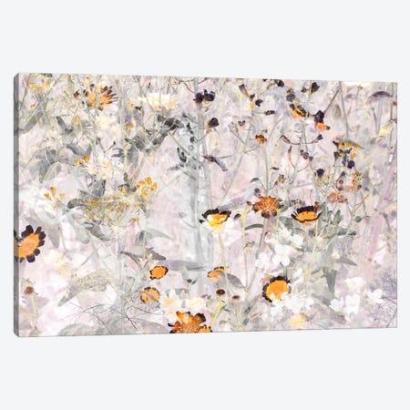 Wild Flowers VI Canvas Print #AII2} by amini54 Canvas Artwork