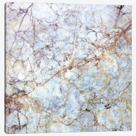 Rich Marble Canvas Print #AII35} by amini54 Canvas Wall Art