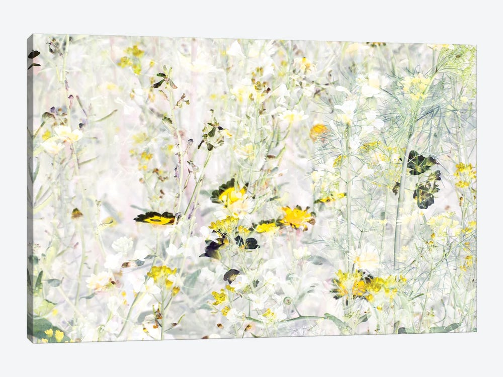 Wild Flowers VIII by amini54 1-piece Canvas Print