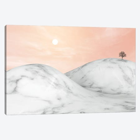 Marble Landscape VIII Canvas Print #AII43} by amini54 Canvas Art