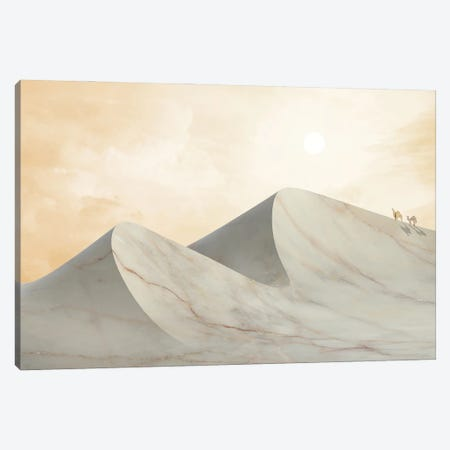 Marble Landscape IX Canvas Print #AII44} by amini54 Art Print