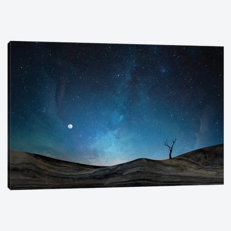Marble Landscape X Canvas Print #AII45} by amini54 Canvas Print