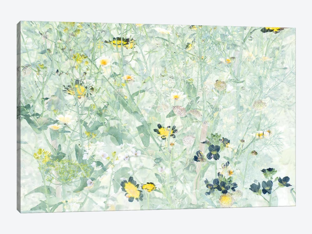 Wild Flowers V by amini54 1-piece Canvas Art