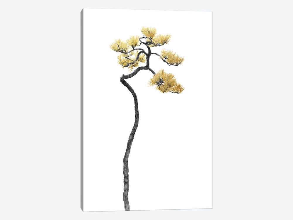 Minimal Botanical - Bonsai Tree V by amini54 1-piece Art Print