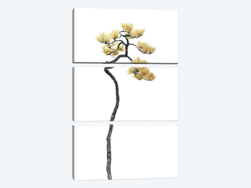 Minimal Botanical - Bonsai Tree V by amini54 3-piece Canvas Print