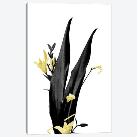 Minimal Botanical - Flower Minimal Black and Gold III Canvas Print #AII54} by amini54 Canvas Art