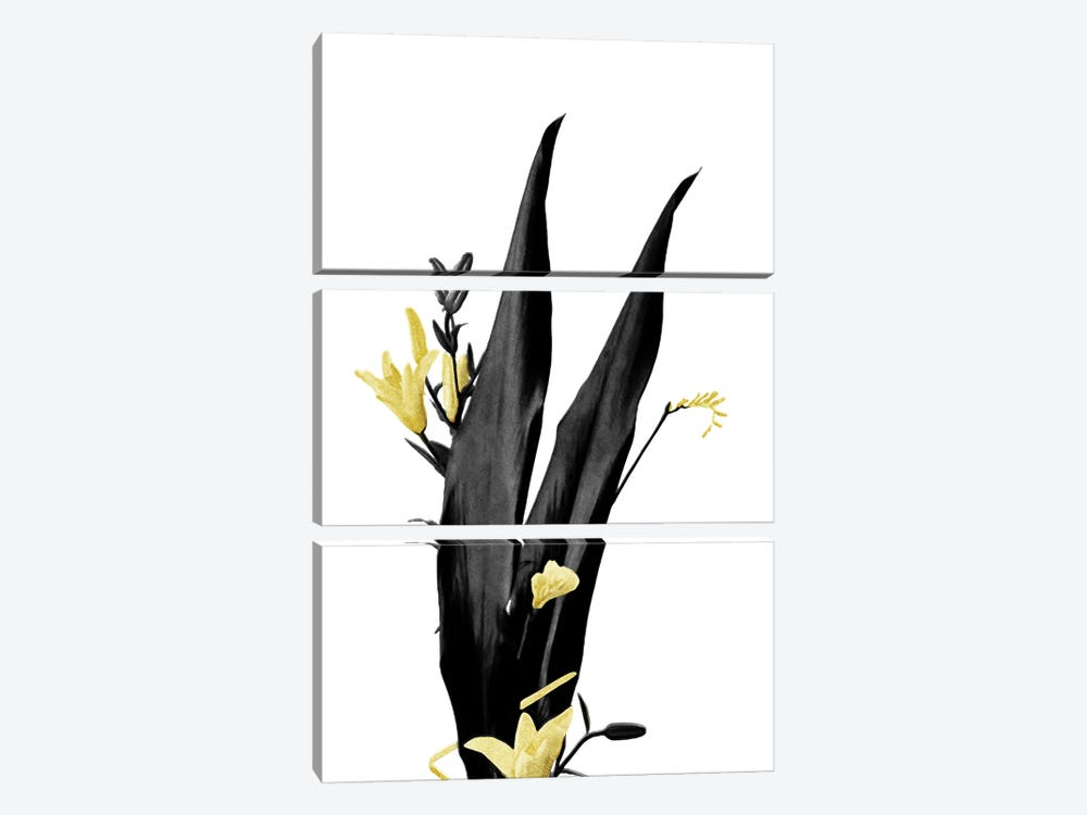 Minimal Botanical - Flower Minimal Black and Gold III by amini54 3-piece Canvas Art