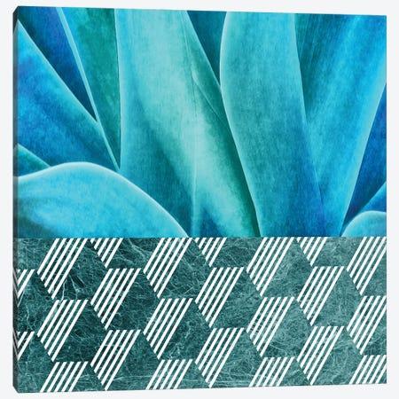 Turquoise Agave on Hexagonal Ceramic Tiles Canvas Print #AII78} by amini54 Canvas Art Print