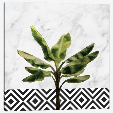 Banana Plant on White Marble and Checker Canvas Print #AII79} by amini54 Art Print
