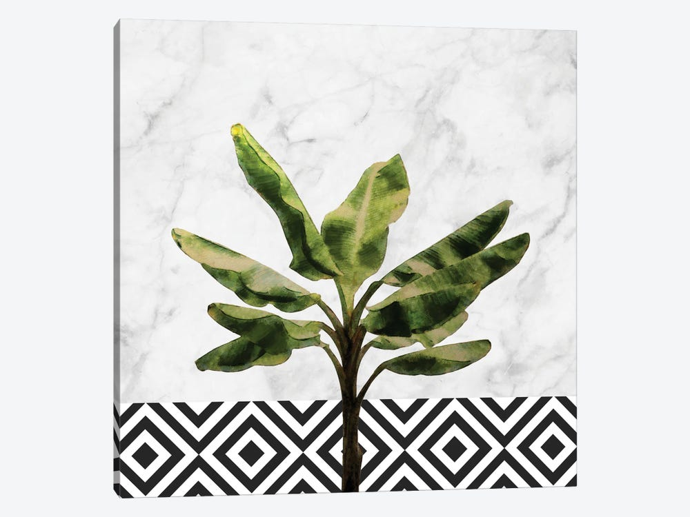 Banana Plant on White Marble and Checker by amini54 1-piece Canvas Art Print