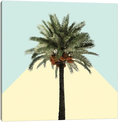 Coconut Tree on Yellow and Teal Canvas Art Print