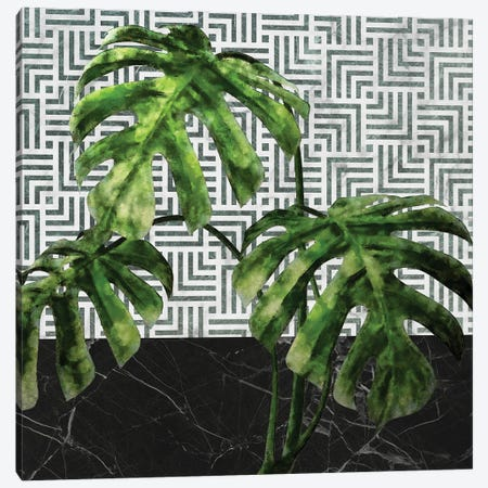 Monstera Leaves on Black Marble and Tiles Canvas Print #AII83} by amini54 Canvas Art