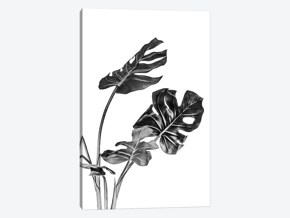 Monstera Black and White II by amini54 1-piece Art Print