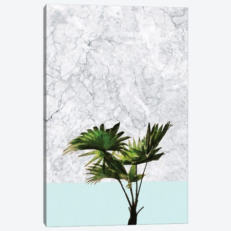 Palm Plant on Marble and Pastel Blue Canvas Print #AII87} by amini54 Canvas Print