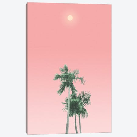 Palm Trees, Sun and Sky Canvas Print #AII88} by amini54 Canvas Art