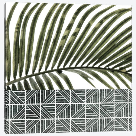 Palm Leaves on White Wall and Ceramic Canvas Print #AII90} by amini54 Canvas Print