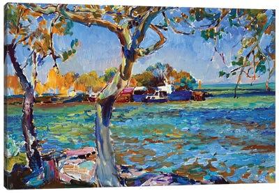 Quiet Sea Harbor Canvas Art Print