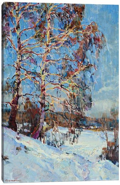 Birch Tree In The Winter Canvas Art Print
