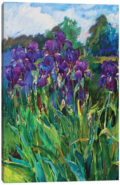 Iris Flowers Canvas Art Print