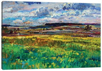 Landscape With Field And Sky Canvas Art Print