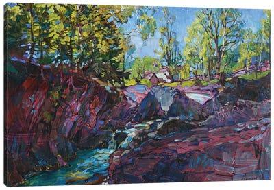 Mountain Canyon Canvas Art Print