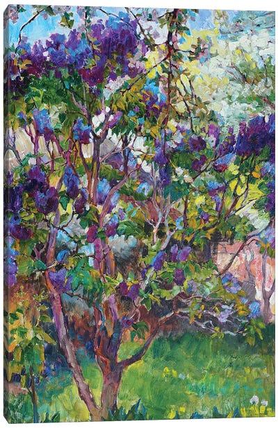 Lilac Landscape Canvas Art Print