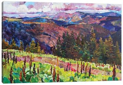 Mountain Landscape Canvas Art Print