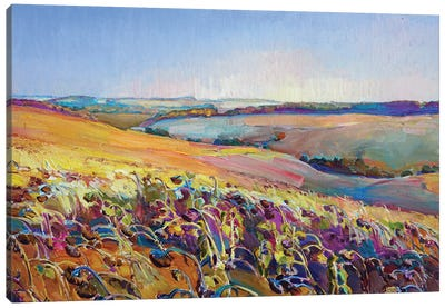 Field Of Sunflowers Canvas Art Print