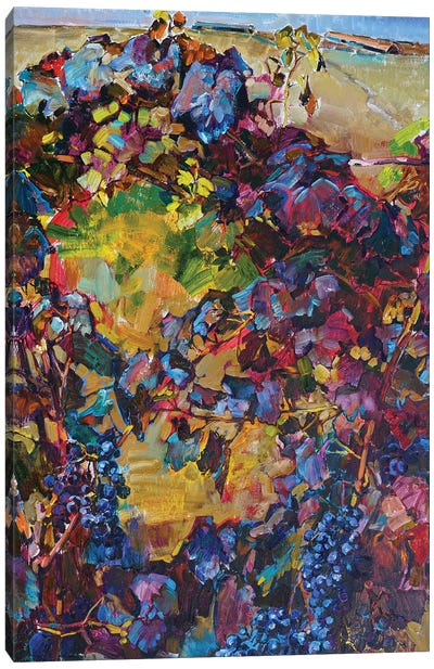 Colorful Grapes Canvas Art Print