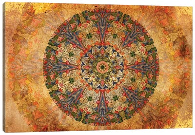 Mandala Series: Lost Manuscript Canvas Print #AIM16